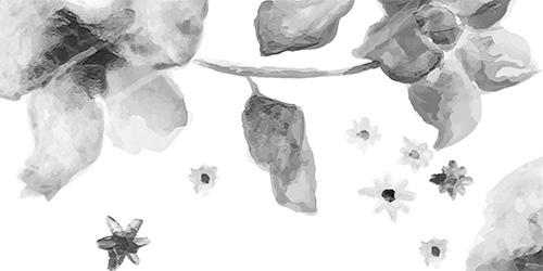 Blooming Life Wellness